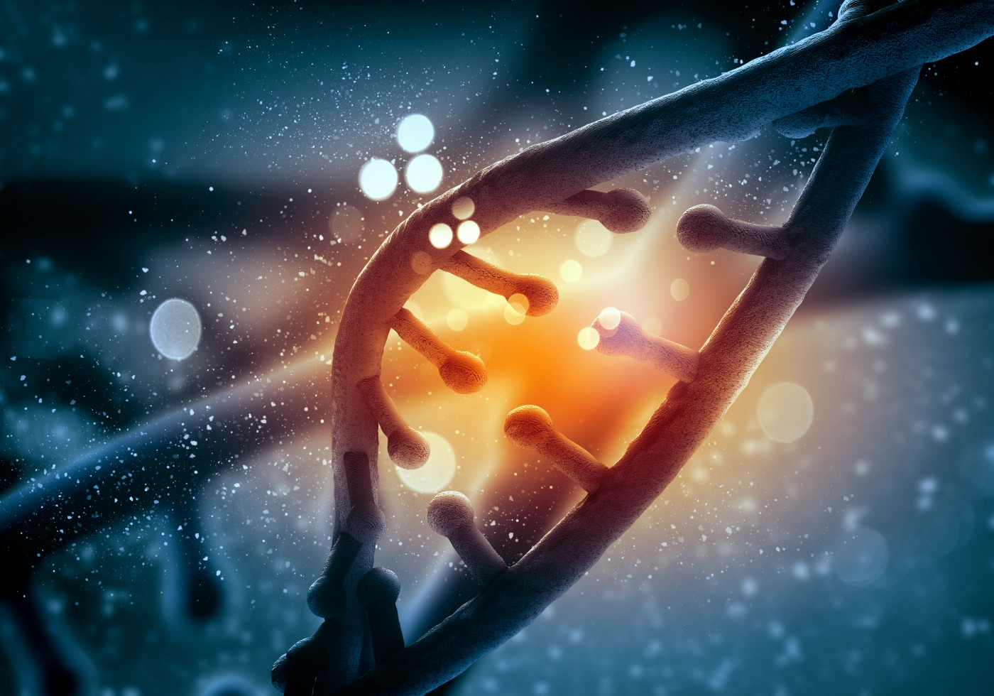 International Research Team Discovers a Gene Linked to the Common Variable Immunodeficiency Disorder
